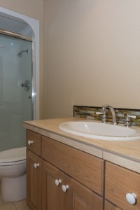 Newly remodeled guest bathroom!
